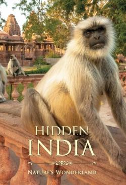 Hidden India